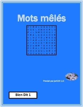 Bien Dit 1 Chapitre 4 Vocabulaire wordsearch