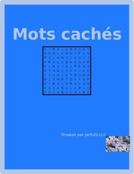 Bien Dit 1 Chapitre 7 Vocabulaire Wordsearch