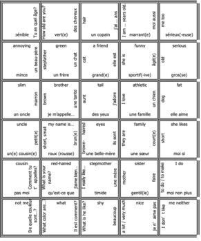 Bien Dit 2 Chapter 5 Vocabulary jigsaw puzzle BUNDLE
