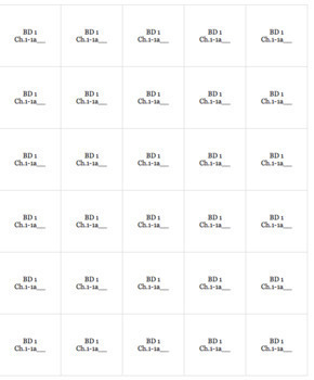 French Bien Dit! Level 1 Chapter 1 Vocabulary jigsaw puzzle BUNDLE