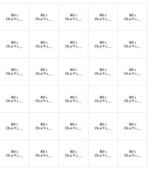 French Bien Dit! Level 1 Chapter 2 Vocabulary jigsaw puzzle BUNDLE