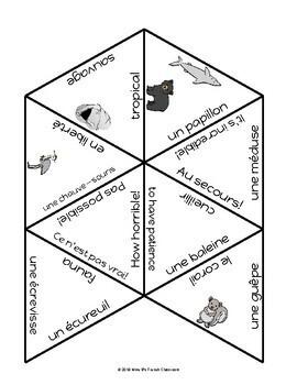 Bien dit 3 Chapitre 5 Vocabulary puzzle: En pleine nature