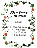 Big 6 Poetry One-Pager