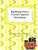 Big Bang Theory Genetics Punnett Squares