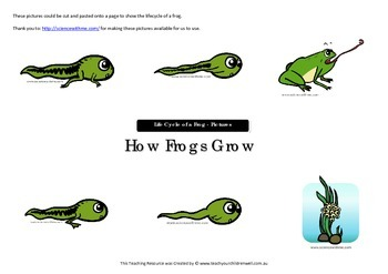 Big Book Activities - How Frogs Grow - 25 pages