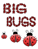 Big Bugs Size Order Pre-K learning game