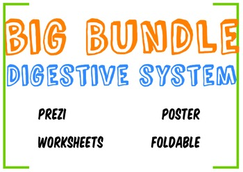 Big Bundle Digestive System