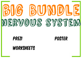 Big Bundle Nervous System