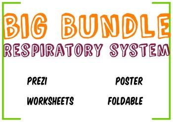 Big Bundle Respiratory System