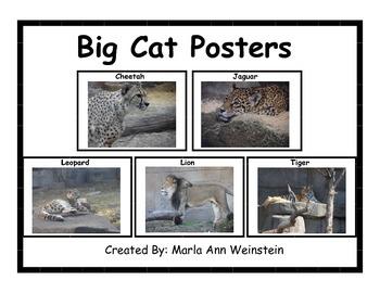 Big Cat Posters