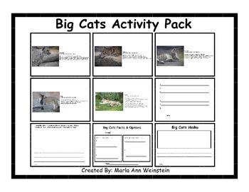 Big Cats Activity Pack