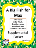 Big Fish for Max--Supplemental--Reading Street 1st Grade