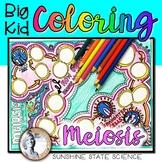 Big Kid MEIOSIS Coloring