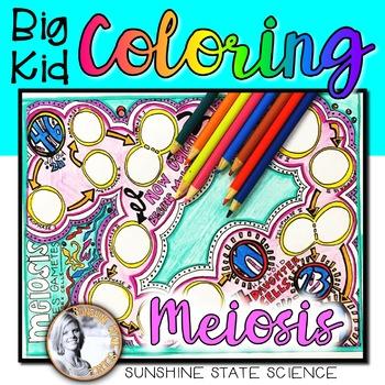 Big Kid MEIOSIS Coloring Pages