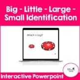 Big - Little - Large -Small Identification (Interactive Po