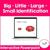 Big - Little - Large -Small Identification (Interactive Po