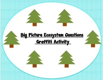 Big Picture Ecosystem Questions Graffiti Activity