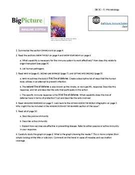 Big Picture Issue 21 Immune System Guided Reading