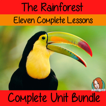 Big Rainforest  Lessons Bundle
