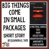 """""""Big Things Come in Small Packages""""  Short Story Quiz Printable & Google Forms"""