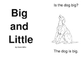 Big and Little Sight Word Book