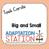 Big and Small Task Cards
