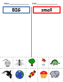 Big and small picture sorting practice and center