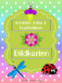 Insekten, Käfer & Krabbeltiere - Bildkarten