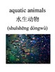 Bilingual Animals (Aquatic Animals) English and Simplified