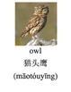 Bilingual Animals (Birds) English and Simplified Chinese PDF