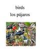 Bilingual Animals (Birds) English and Spanish PDF