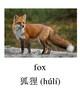 Bilingual Animals Bundle English and Simplified Chinese PDF