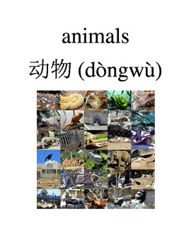Bilingual Animals English and Simplified Chinese PDF