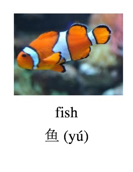 Bilingual Animals (Pets) English and Simplified Chinese PDF