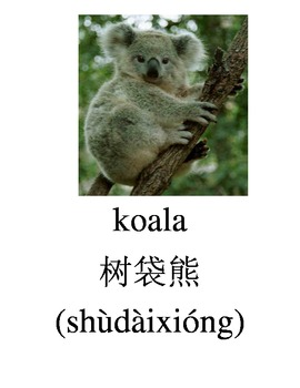 Bilingual Animals (Zoo Animals) English and Simplified Chi