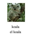 Bilingual Animals (Zoo Animals) English and Spanish PDF