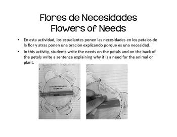 Bilingual Basic Needs of Animals and Plants (Spanish- Necesidades Basicos)