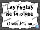 Bilingual Class Rules/ Reglas de la Clase