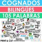 Bilingual Cognates - Cognados - Word Wall Cards
