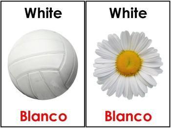 Bilingual Color Cards