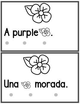 Bilingual Color Purple Book