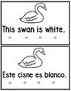 Bilingual Color White  Book
