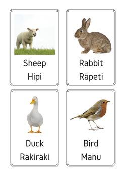 Bilingual English and Māori animal printables