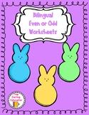 Bilingual Even & Odd Worksheets