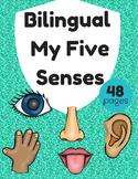 Bilingual Five Senses (Los cinco sentidos bilingue)