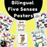 Bilingual Five Senses Posters (English & Spanish) Carteles Cinco Sentidos