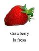 Bilingual Fruits English and Spanish PDF