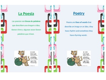 Bilingual Genre Posters
