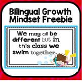 Bilingual Growth Mindset Class Poster