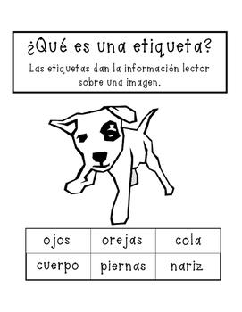 Bilingual Labeling Activity